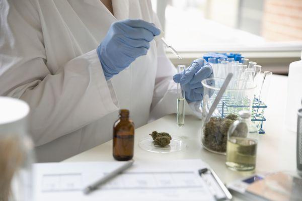CBD oil in lab