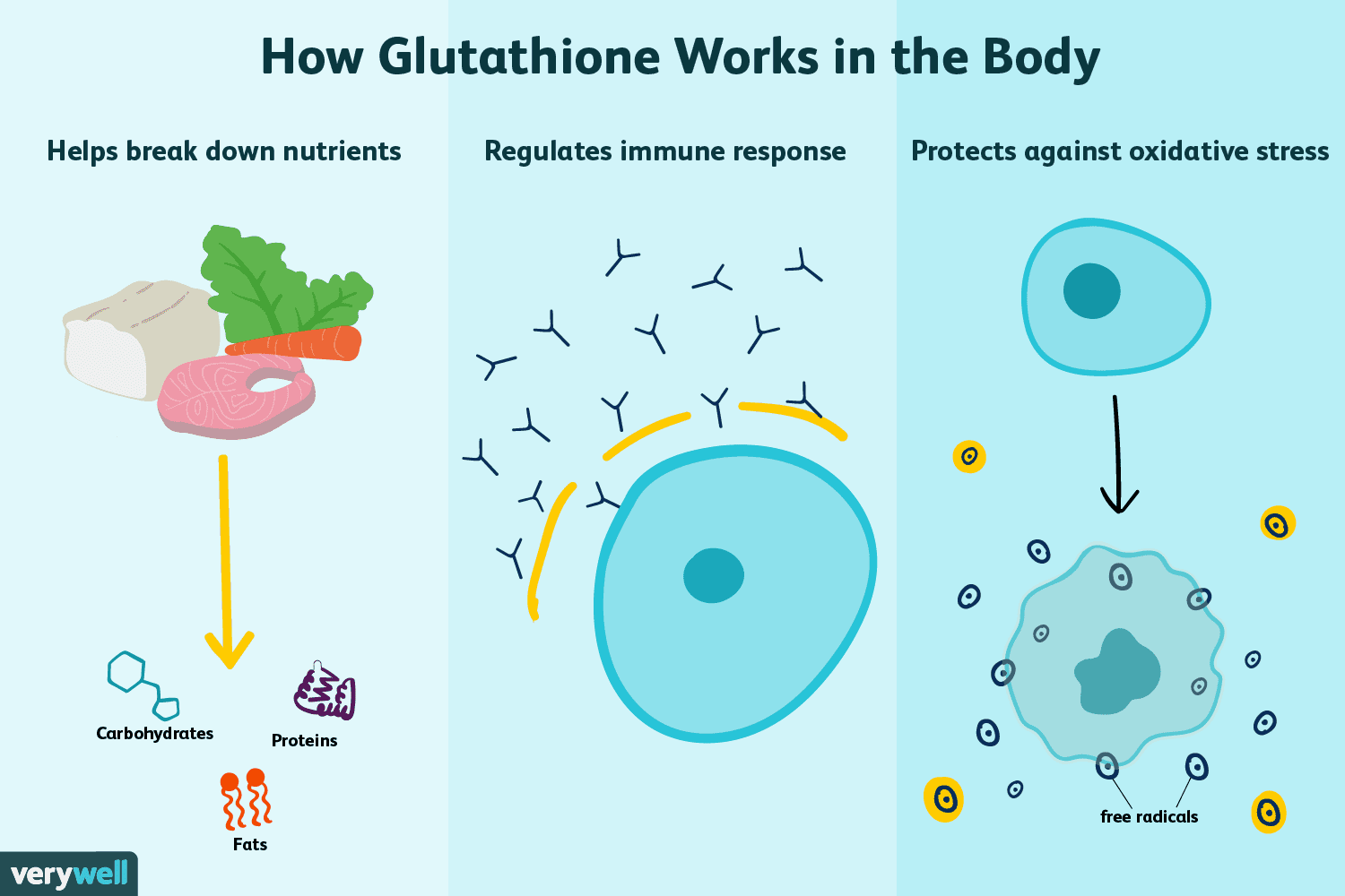 Benefits of Glutathione and Supplements to Raise it