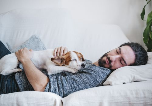 A man napping on the couch with his small dog.