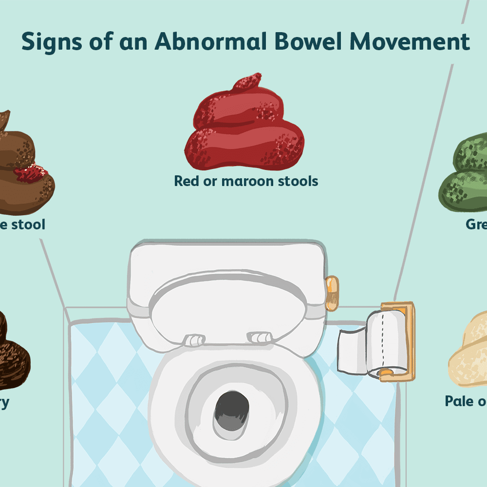 What It Means To Have A Normal Bowel Movement