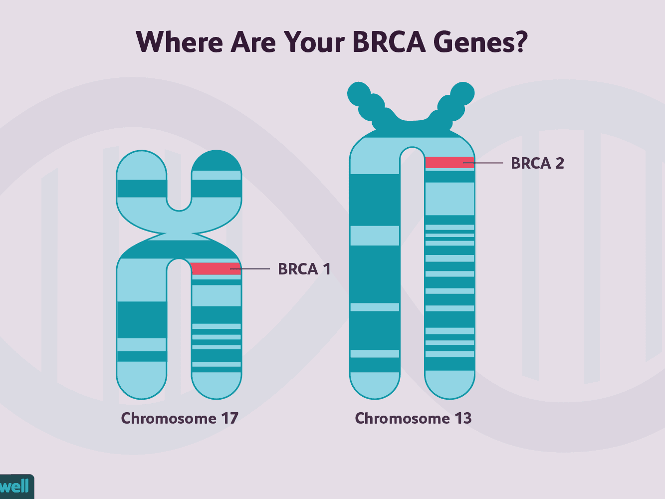 Cancer genetic mutations in humans. Romania Cancer Oranisations and Resources | CancerIndex