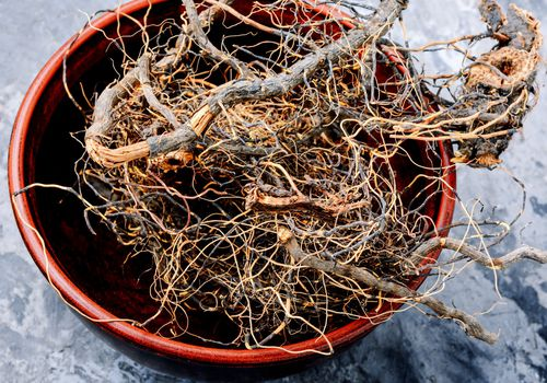 Maral root in a bowl