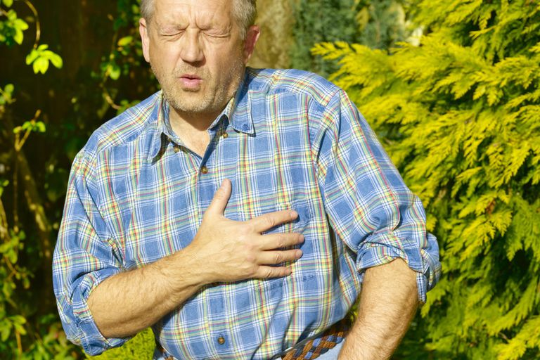 Senior gardener having heart attack.