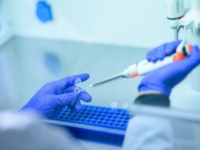 Genetic test in lab