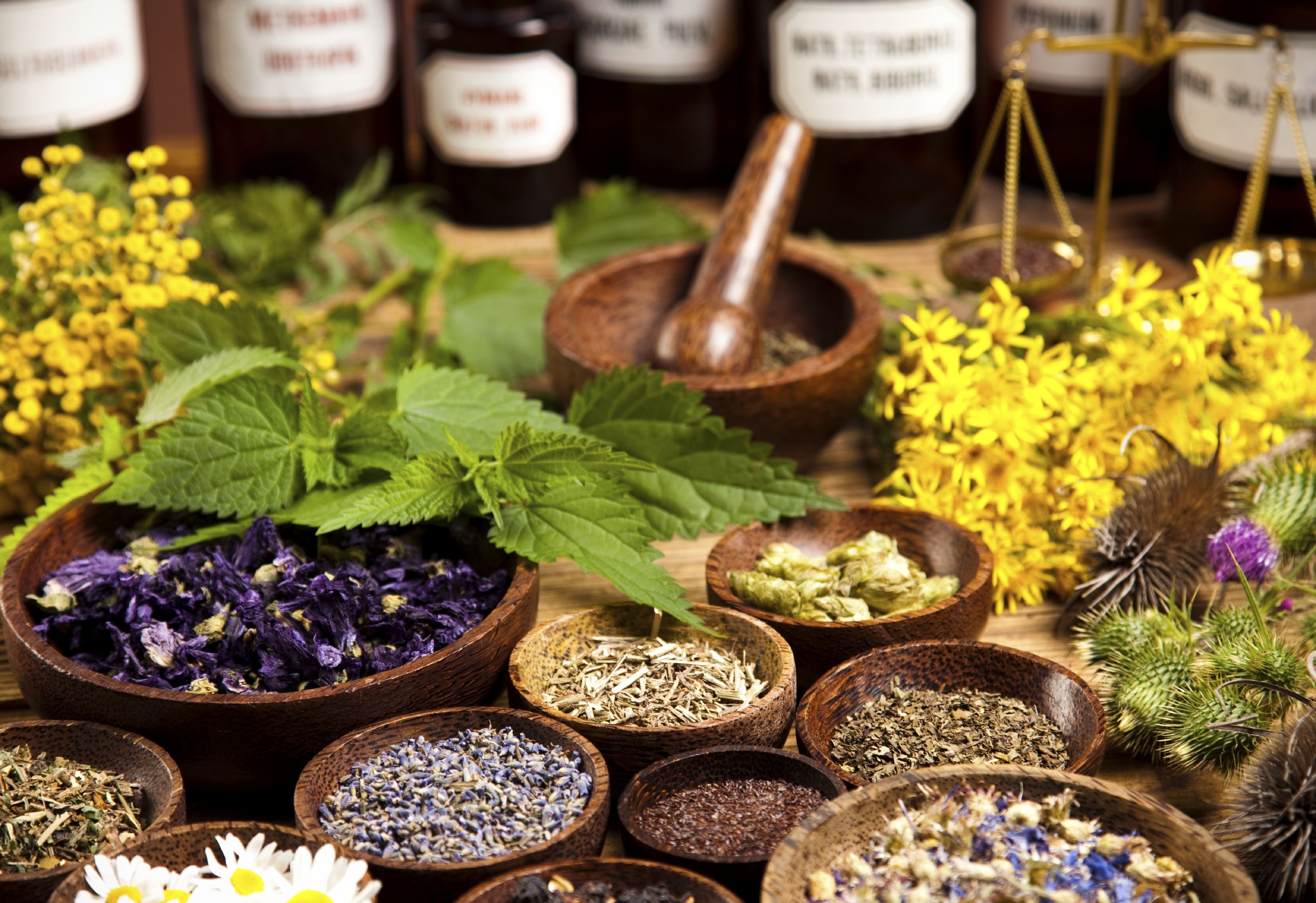 An Overview of Homeopathic Medicine