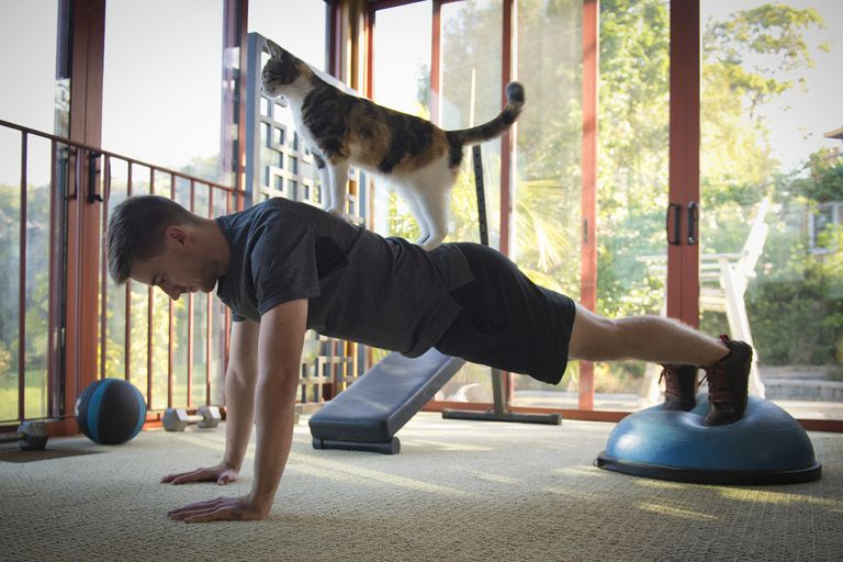 Balance Exercises in Physical Therapy