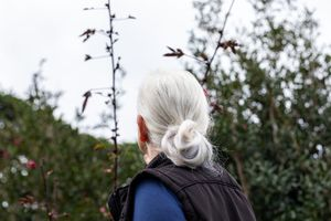 Senior woman with white hair in a bun out in the garden looking at a flowering plant