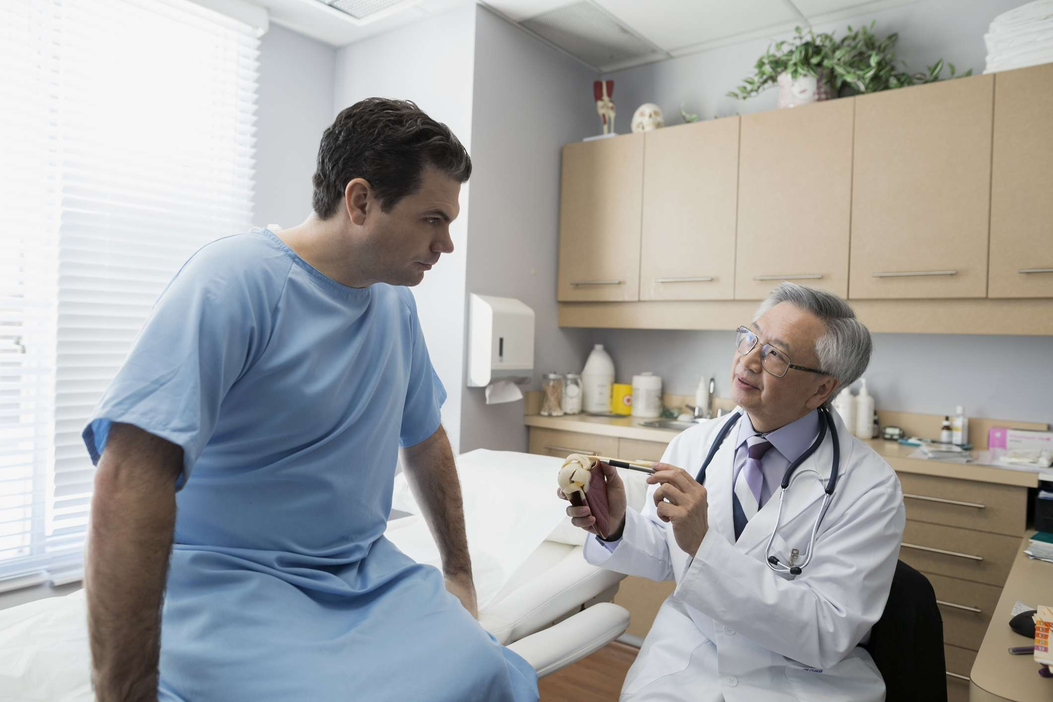 A doctor explaining a model to patient