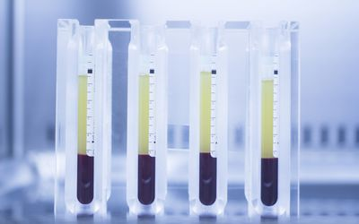 Insulin separated from blood in container