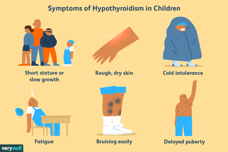 Hypothyroidism And Weight Gain Pdf | Blog Dandk