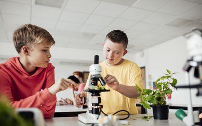 Laboratory Partners