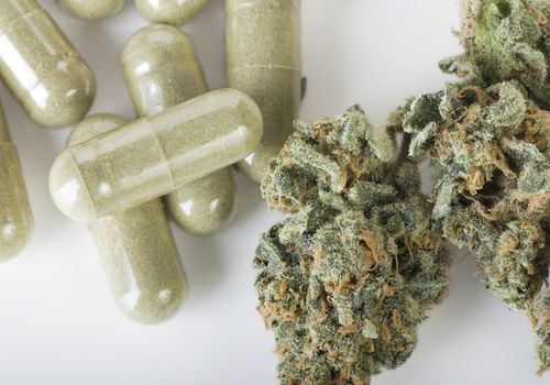 Medicinal Marijuana buds and capsules