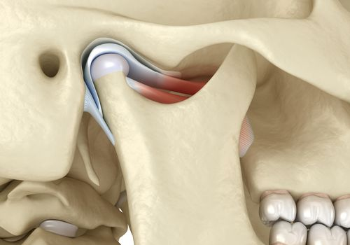 Location of the temporomandibular joint