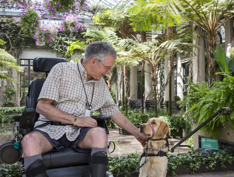 Service dog and her recipient look at each other at Longwood Gardens