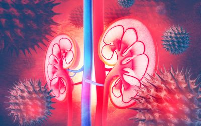 When You Should See a Kidney Doctor