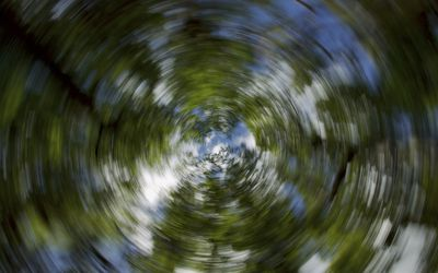 blurred view of trees from dizzy perspective