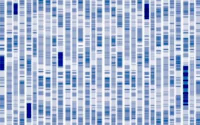 Cancer Gene Twice As Likely To Be >> Relation Heredity And Genetic Factors For Lung Cancer