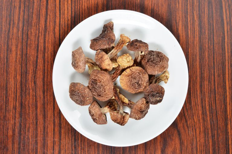 Dried agaricus blazei murill on white plate