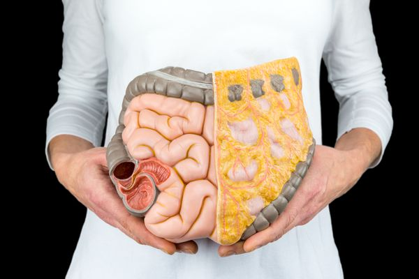 Female person holds human intestines model at body