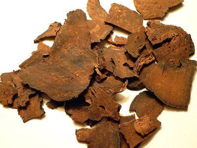 Fo-ti / Polygonum multiflorum root dried