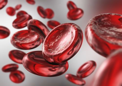 red blood cells. beautiful scientific background.