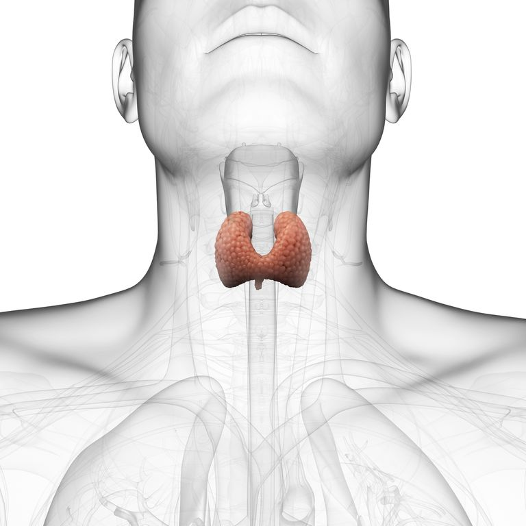 Thyroidectomy - Surgery to Remove the Thyroid Gland