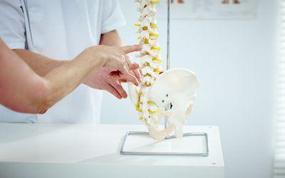 spine doctor