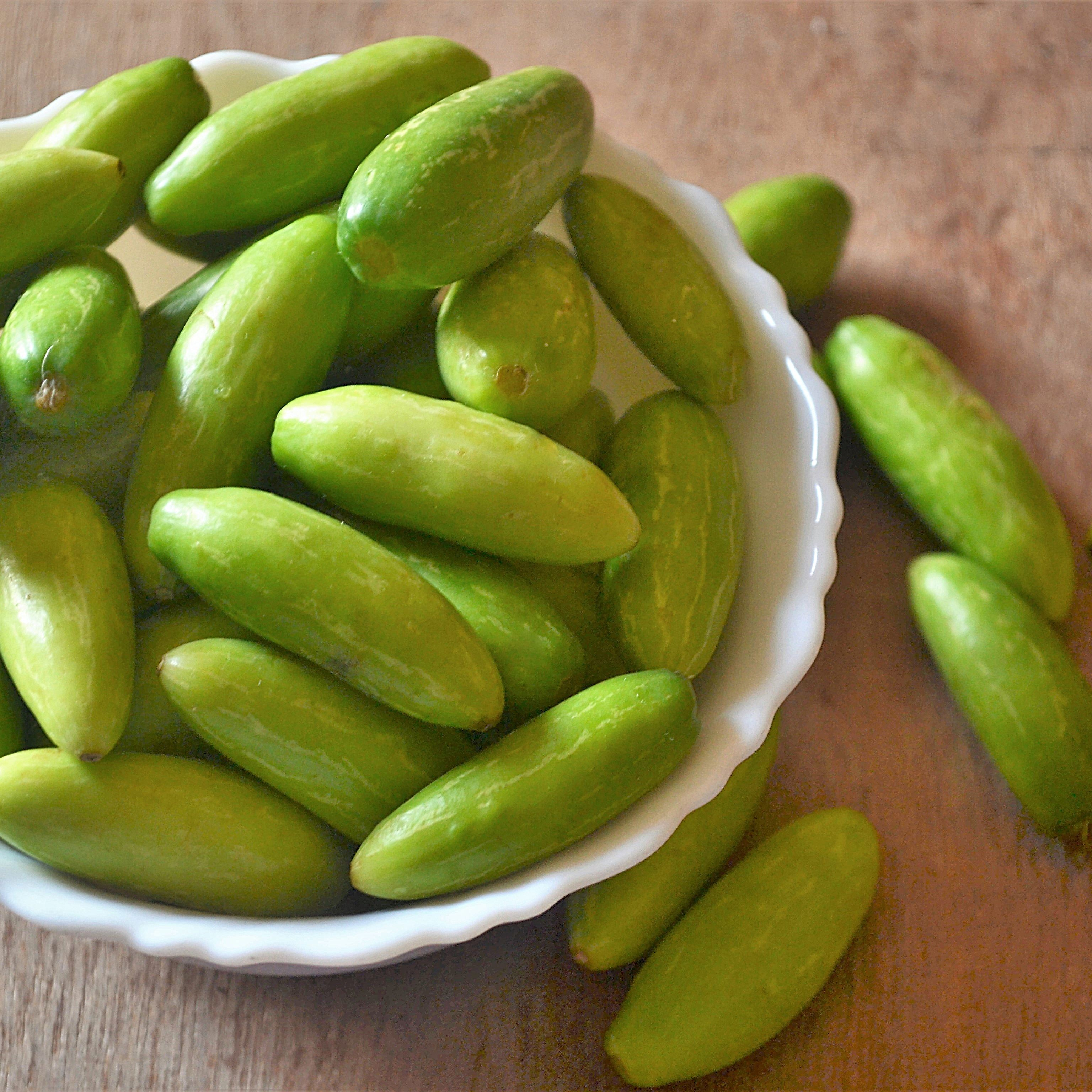ivy gourd: benefits, side effects, dosage, interactions