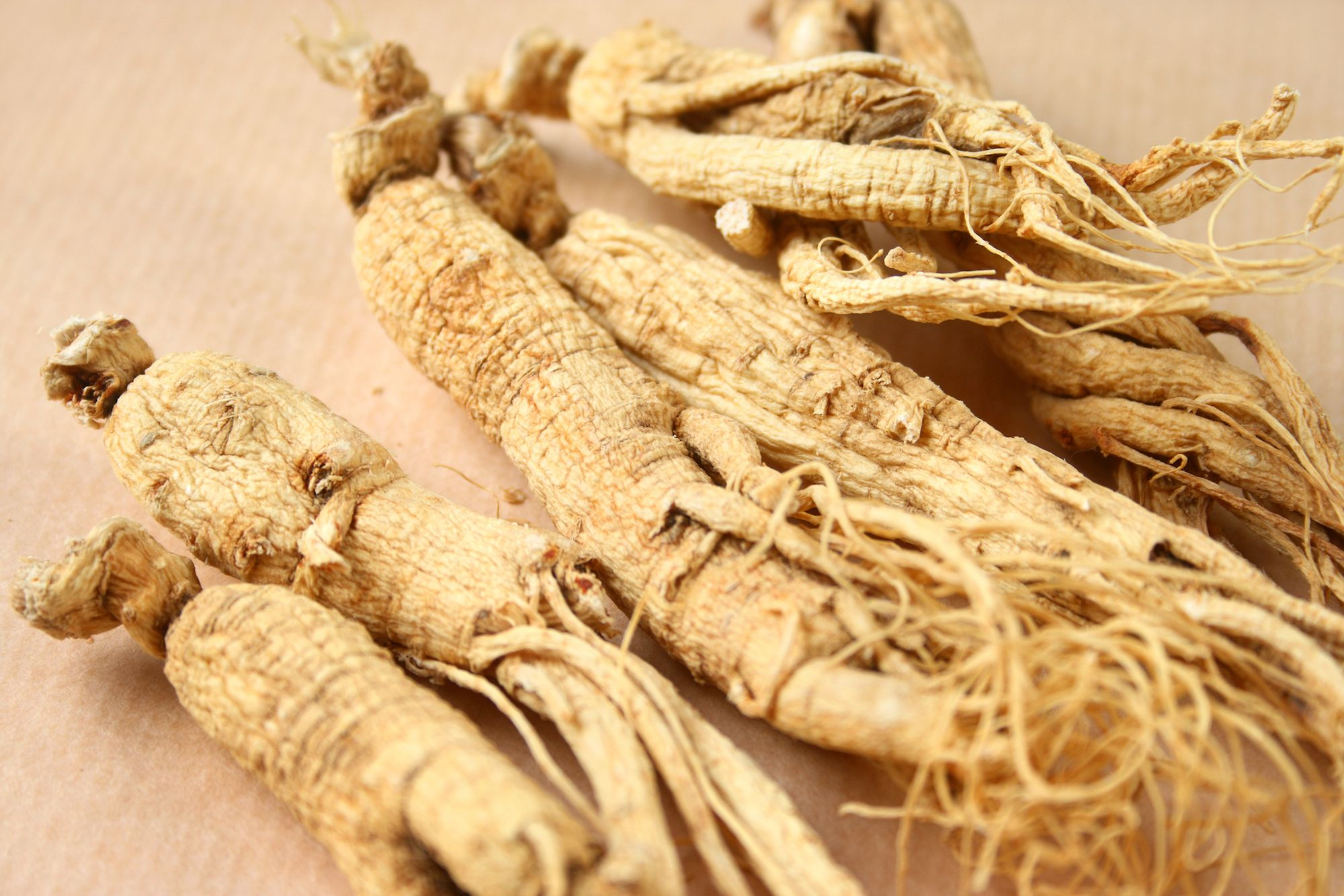 Panax Ginseng: Benefits, Side Effects, Dosage, and Interactions