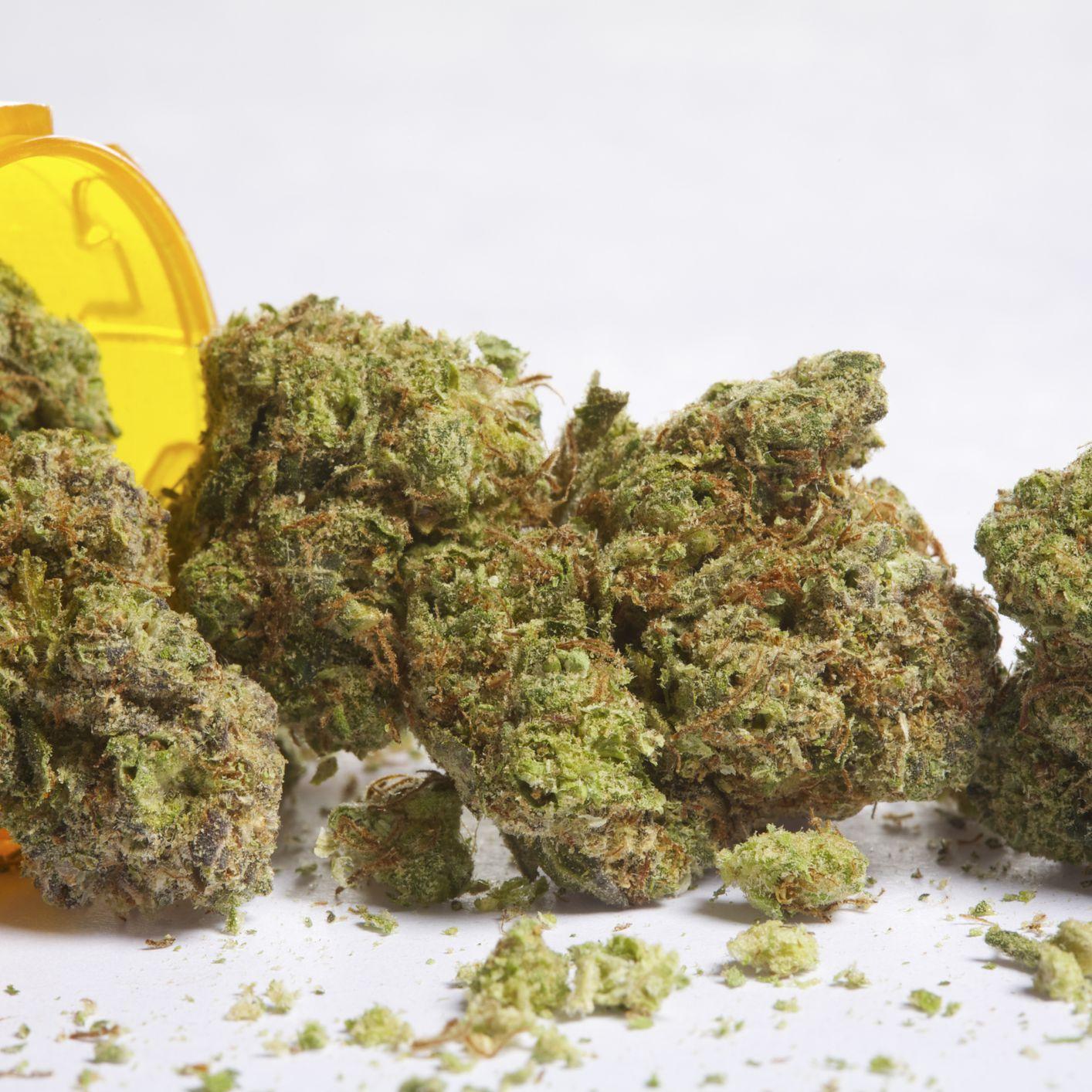 Marinol or Marijuana for Medicinal Use