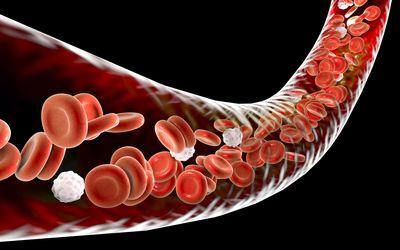 Intravenous Immunoglobulin (IVIG) for MS Treatment