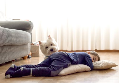 Childhood sleeping on floor next to white dog