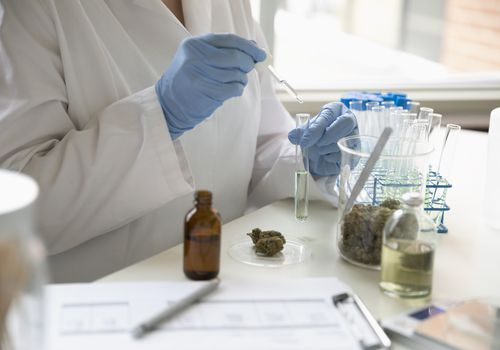 cbd oil for parkinson's disease