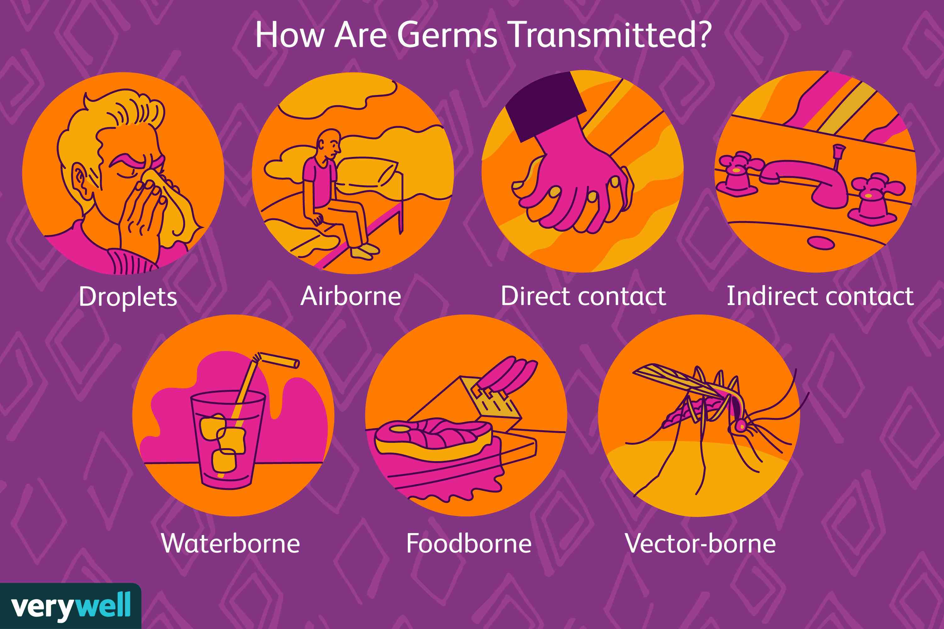 How Are Germs Transmitted?