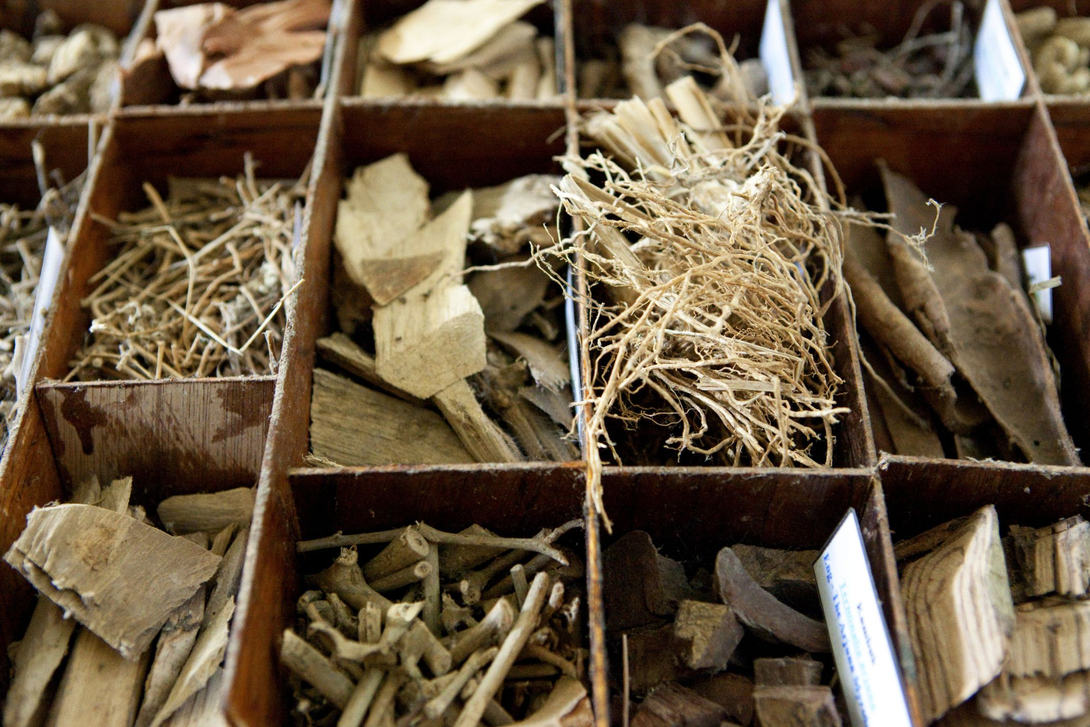 Ayurvedic Herbs: Benefits, Side Effects, Dosage, and