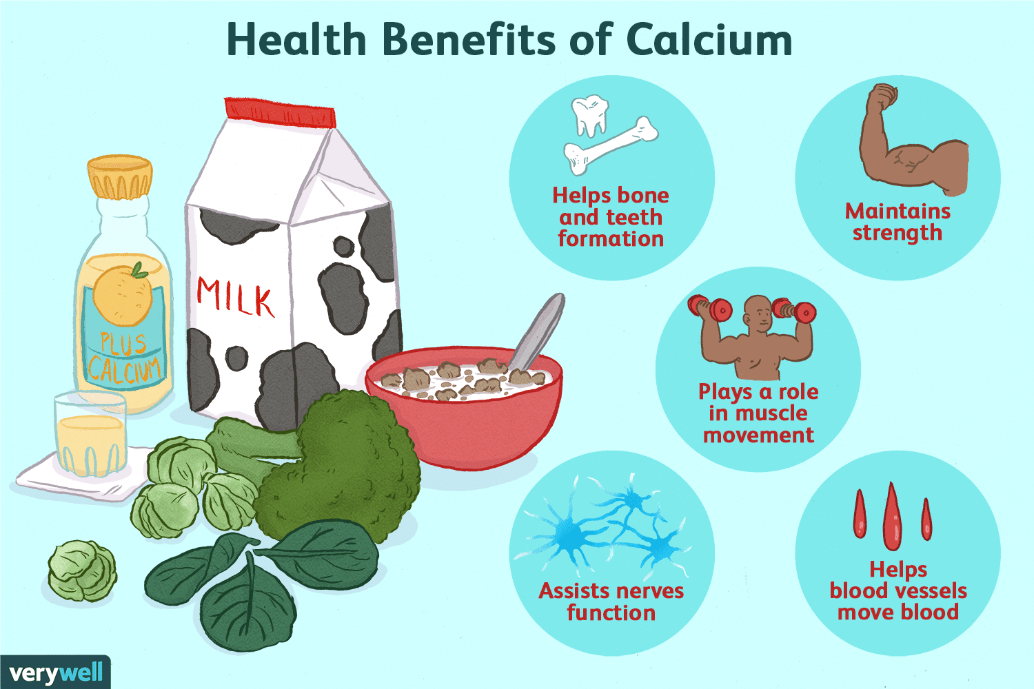 Calcium: Benefits, Side Effects, Dosage, and Interactions