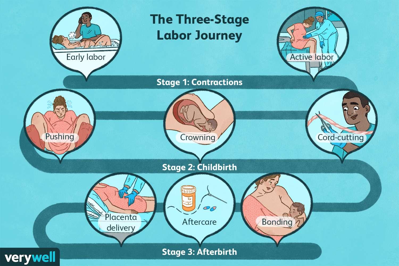 The Three-Stage Labor Journey