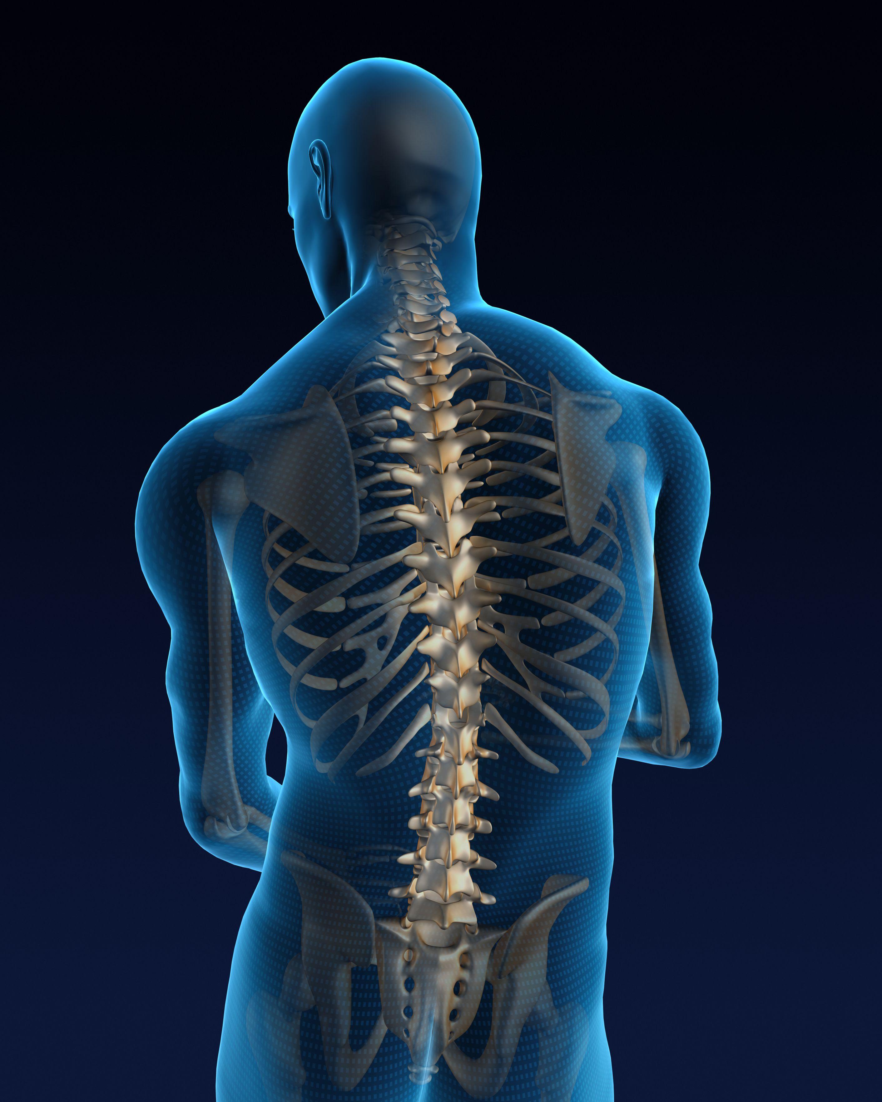 What Causes Ankylosing Spondylitis?