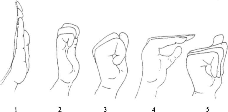 tendon gilding exercises