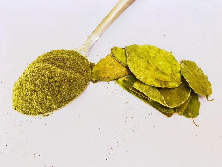 Gymnema sylvestre leaves and powder