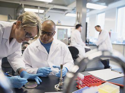 Scientists conducting scientific experiment in laboratory