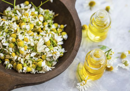 chamomile flowers and oil