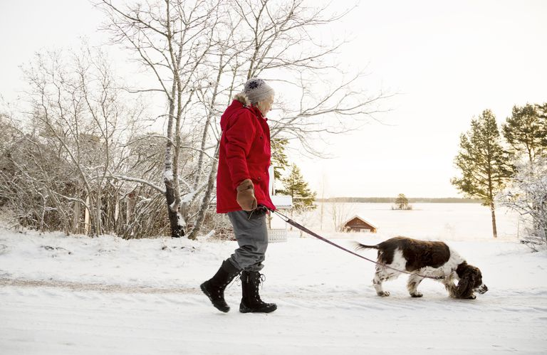 Senior woman walking dog in cold