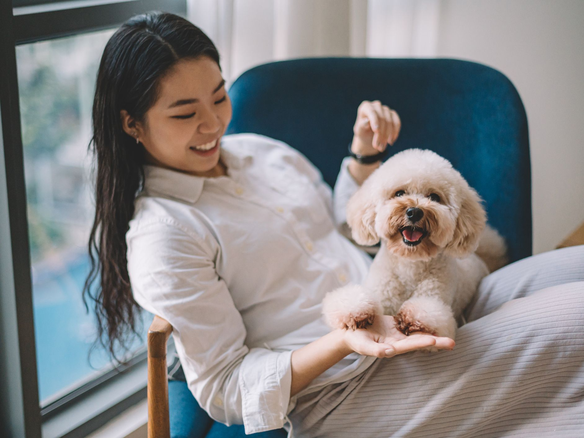 Fastest Dog Asthma Attack What To Do