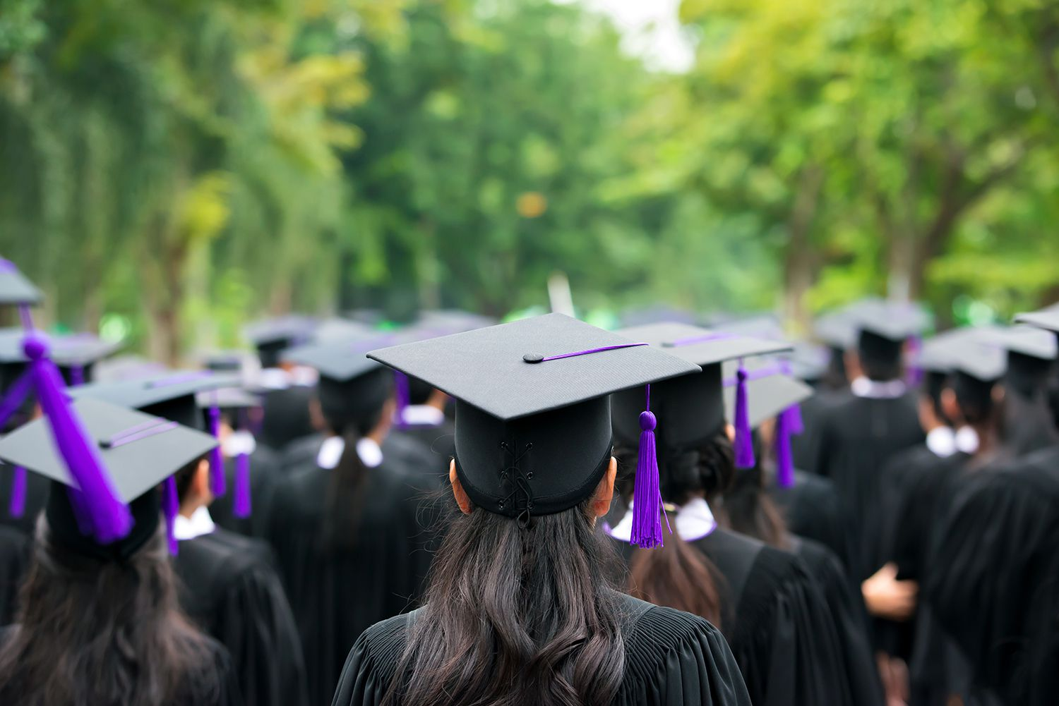 Back of graduates during commencement at university