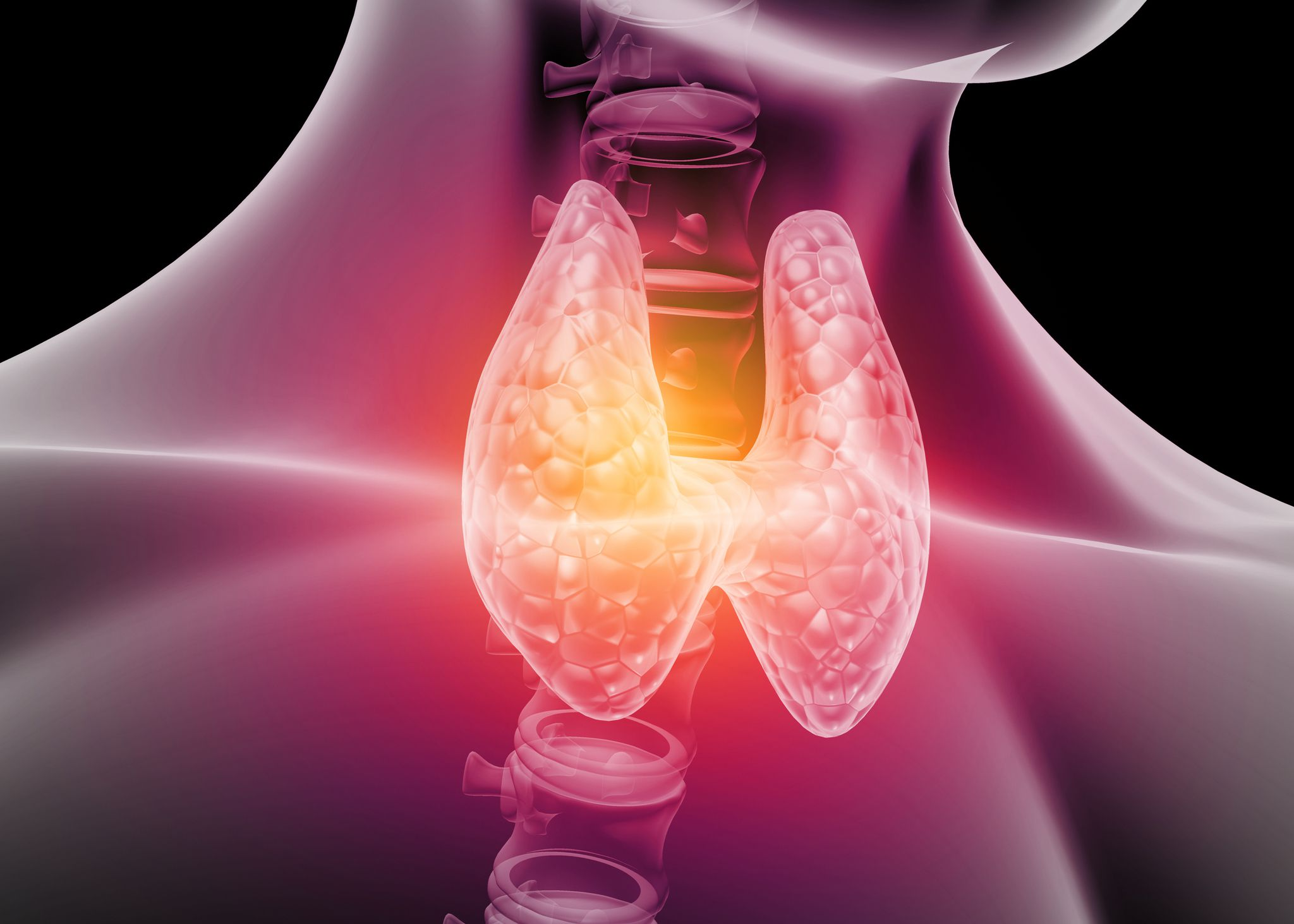 Best At-Home Thyroid Tests of 2021