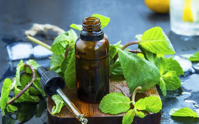 essential oil bottle with dropper surrounded by green leaves