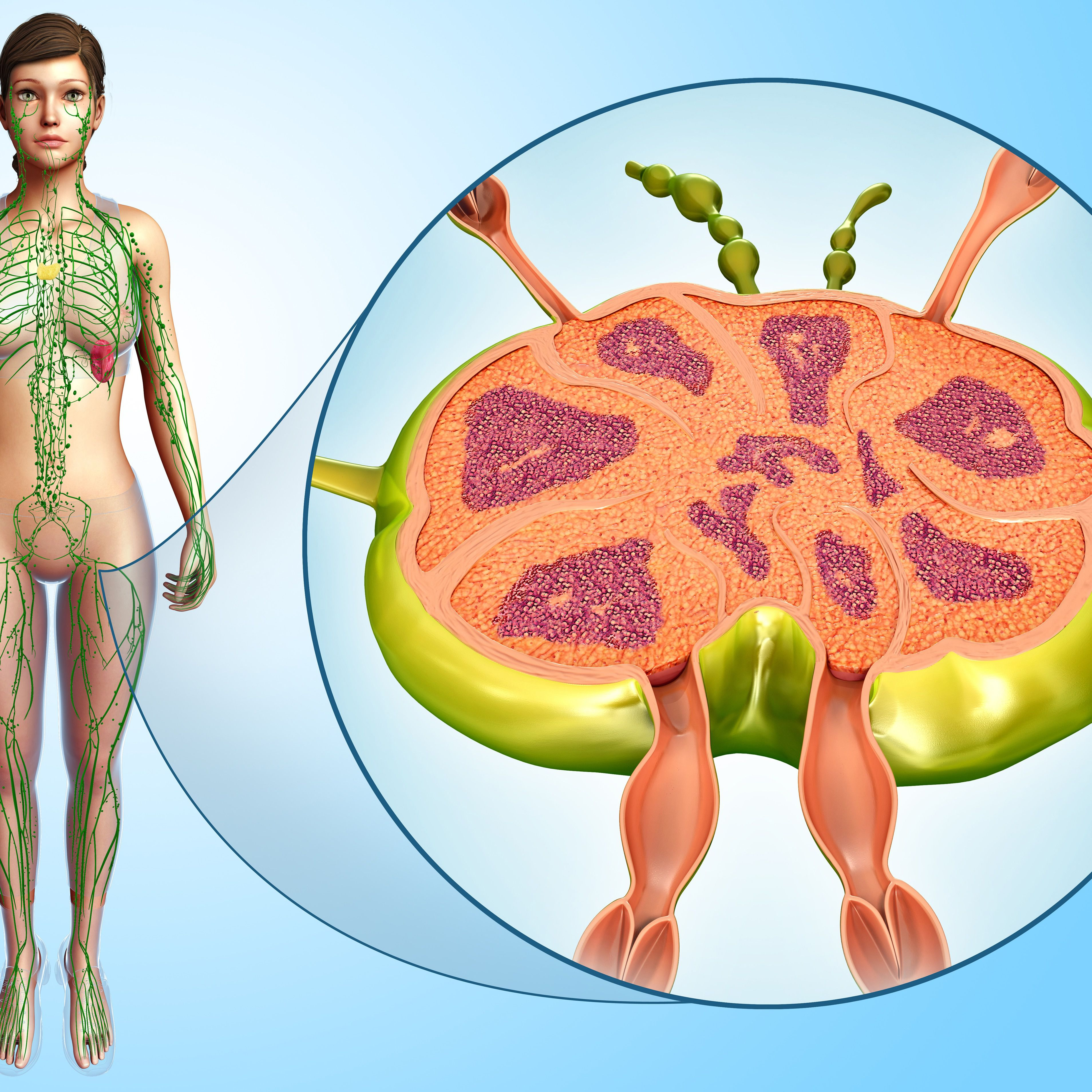 Do Enlarged Lymph Nodes Offer Clues About Cancer
