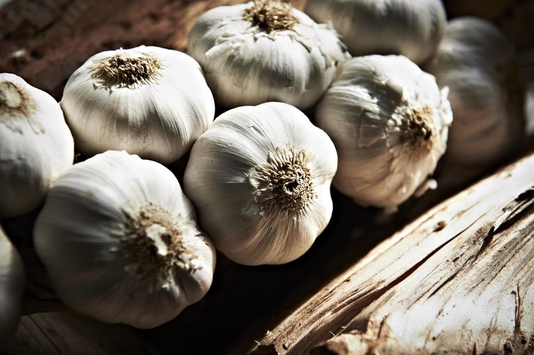Can Garlic Lower Your Cholesterol?