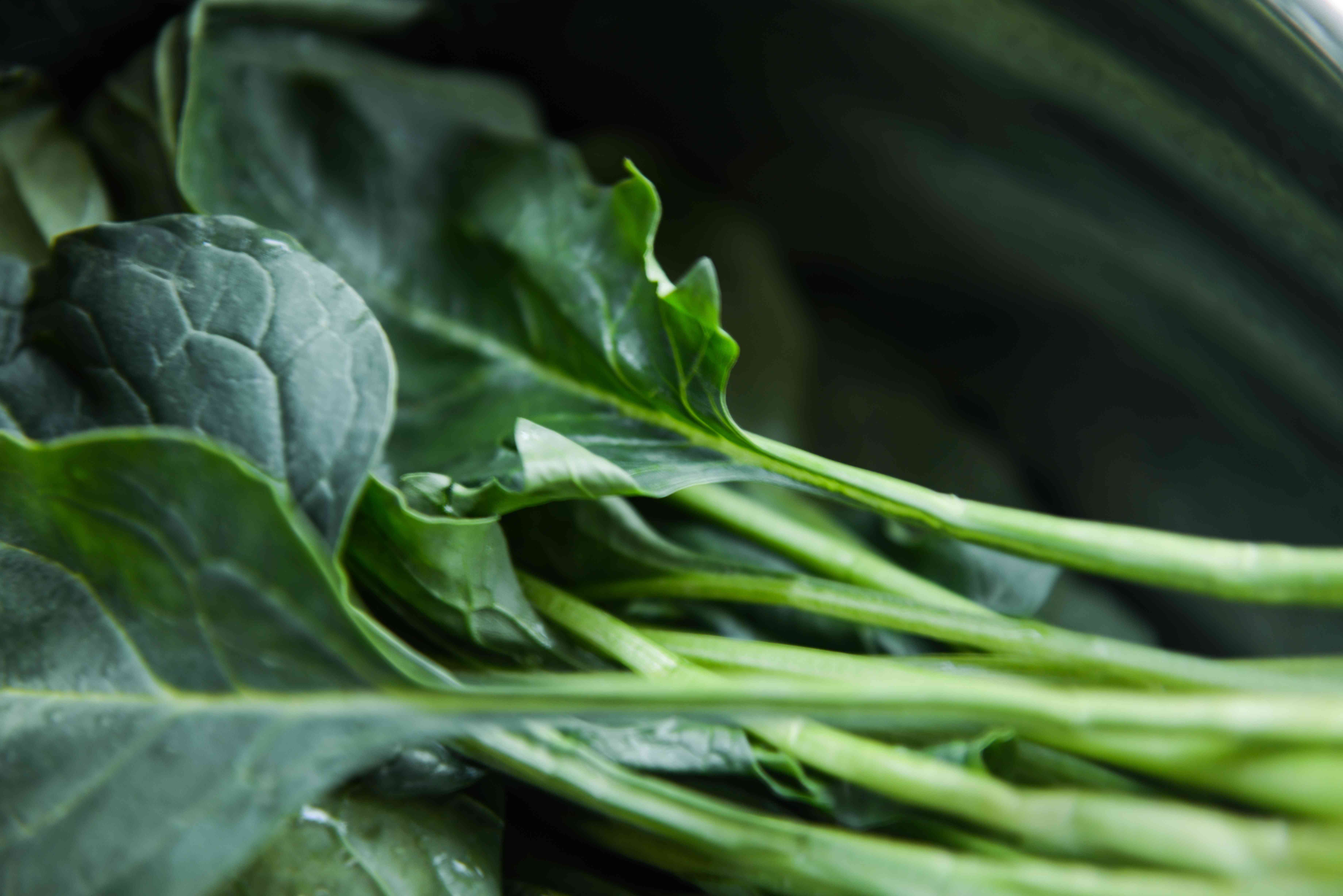 Close up of fresh greens.